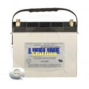 Comprar la Batería Lifeline GPL-2400T