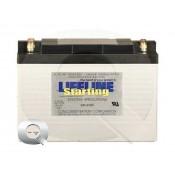Comprar la Batería Lifeline GPL-3100T