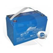 Venta online de la Batería Fullriver DC115-12